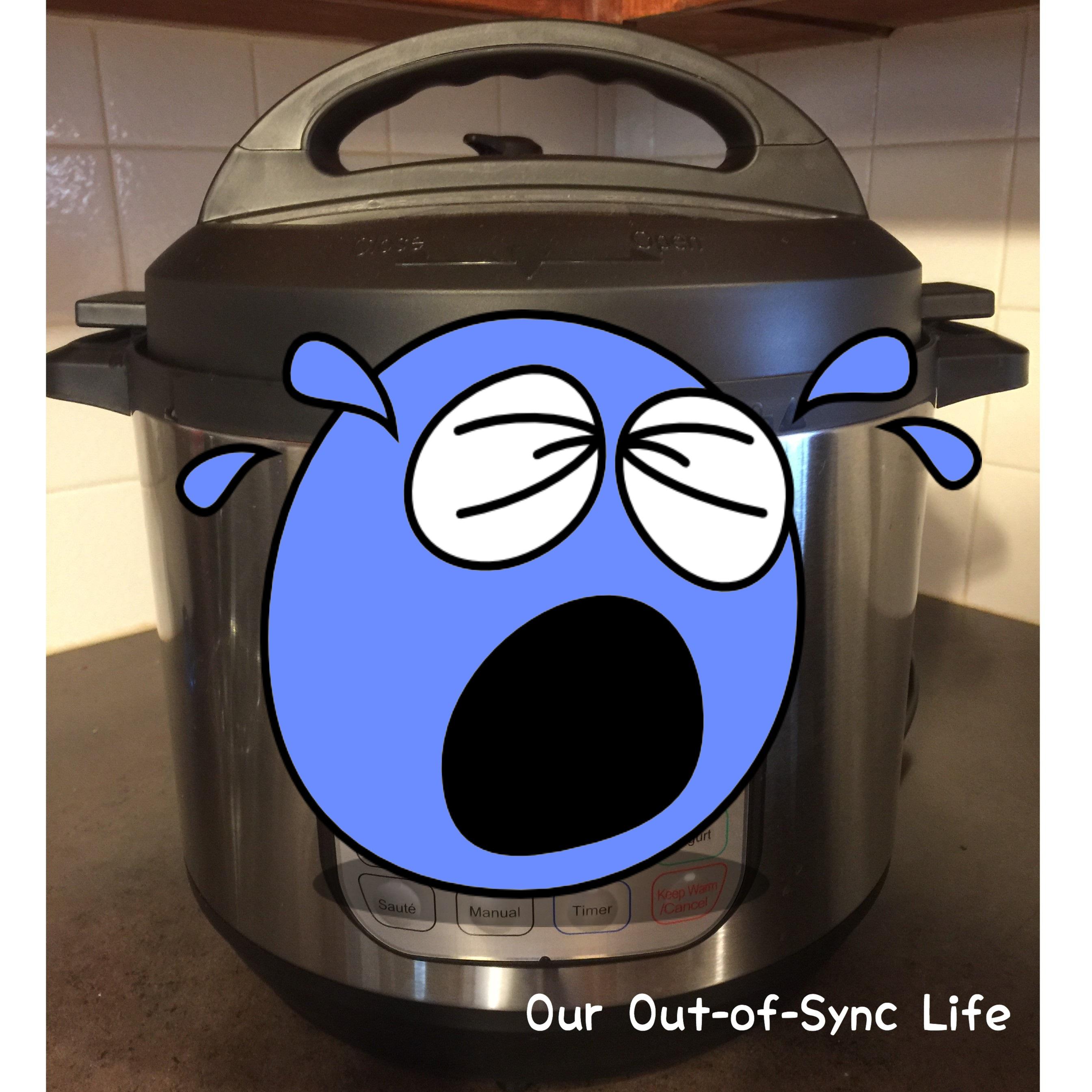 Instant Pot - Sad Face