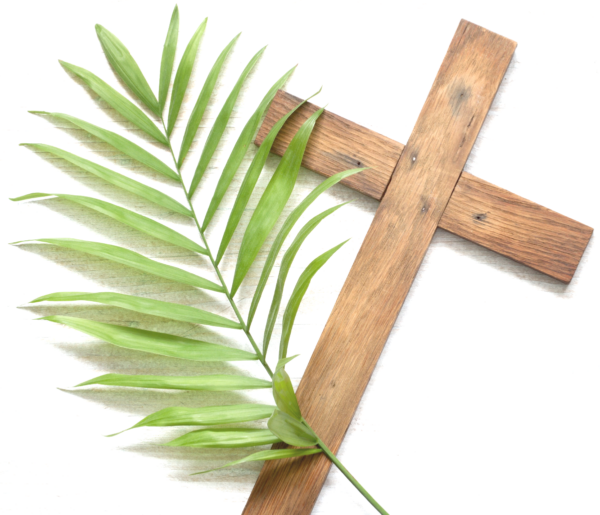 A cross with a palm branch.